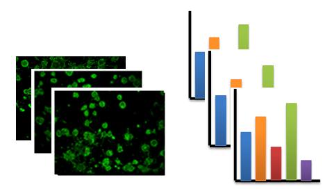 Cells and barplots